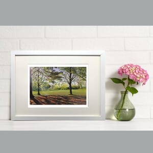 Horsham Park II in Frame