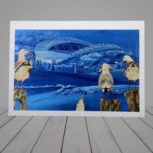 Greeting Card -  seagulls watching Brighton and Hove Albion football stadium