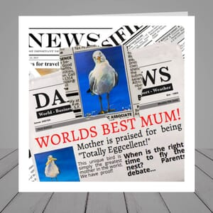 Mothers Day Card - Seagull Newspaper Design
